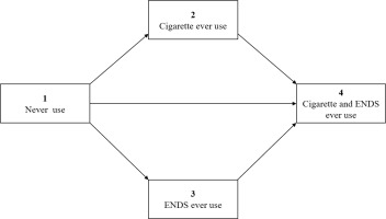 http://www.tobaccoinduceddiseases.org/f/fulltexts/128488/TID-18-92-g002_min.jpg